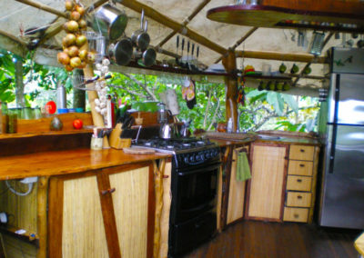 HUGE Treehouse Modern Kitchen