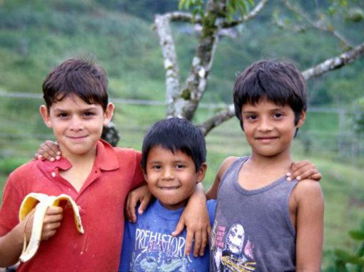 Tico Kids